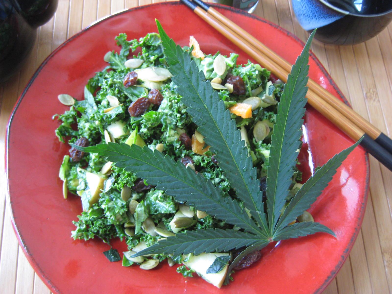 Коноплей салат с купить где в марихуану паттайе
